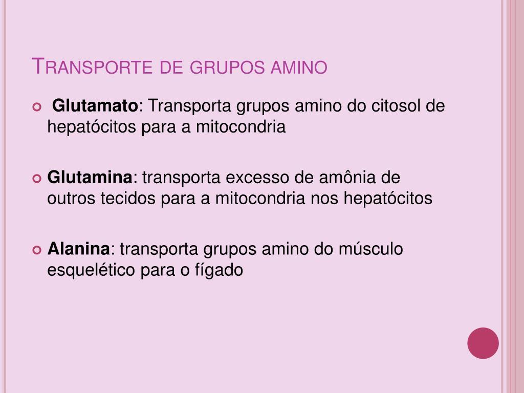Transporte de grupos amino