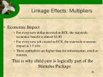 linkage effects multipliers