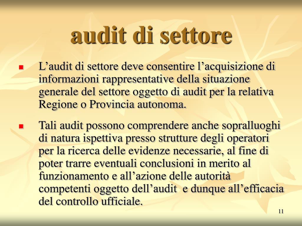audit di settore
