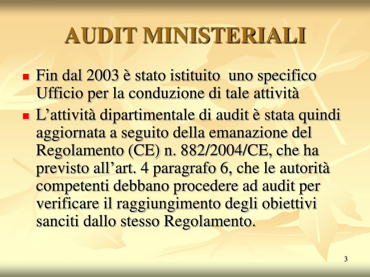 Audit ministeriali3