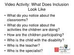 video activity what does inclusion look like