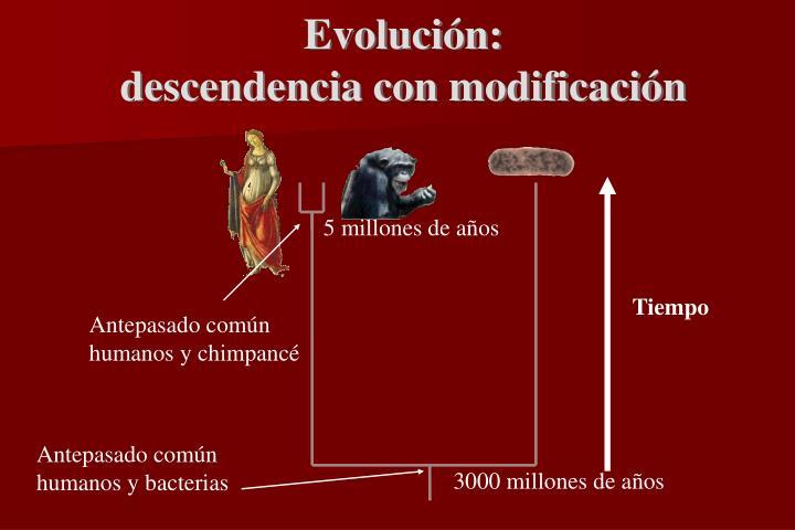 5 millones de años