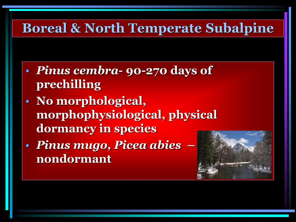 Boreal & North Temperate
