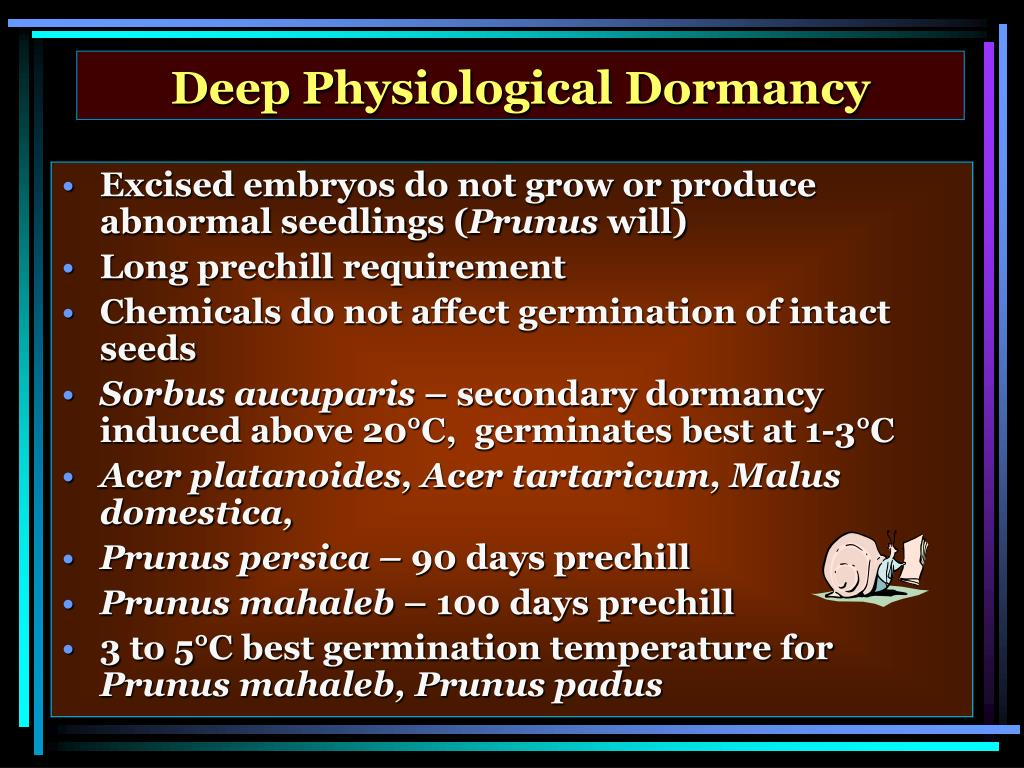 Deep Physiological Dormancy
