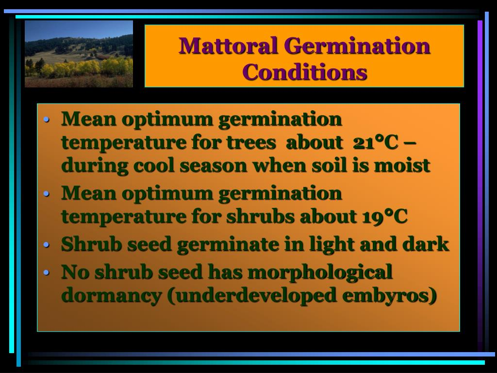 Mattoral Germination Conditions