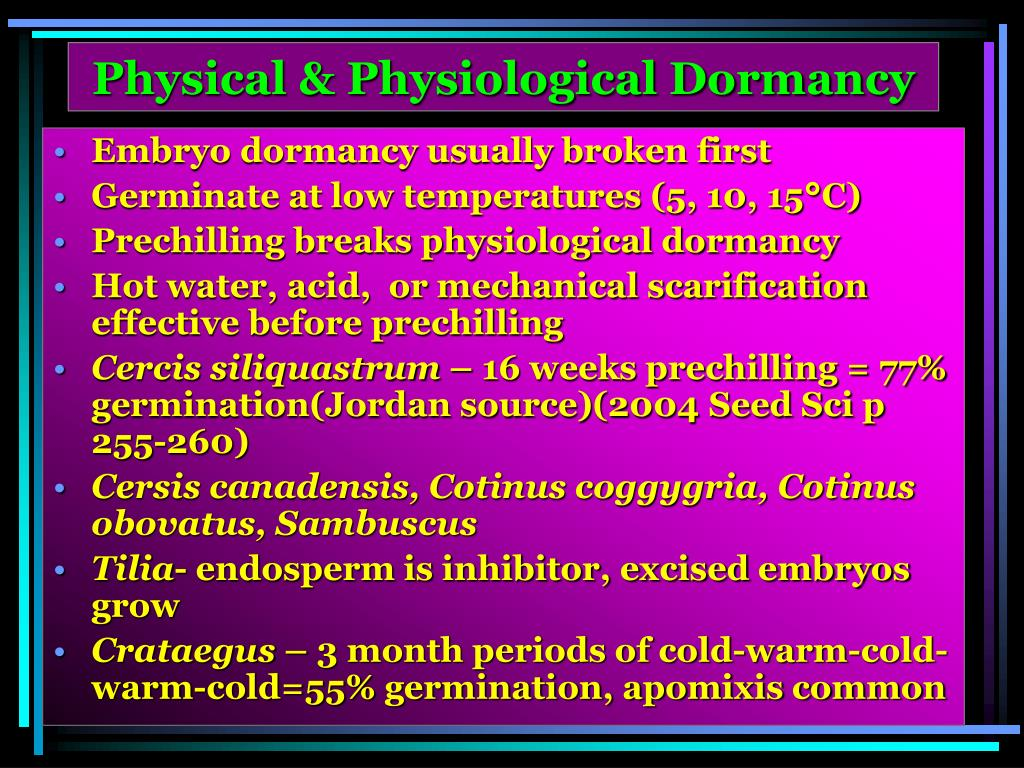 Physical & Physiological Dormancy
