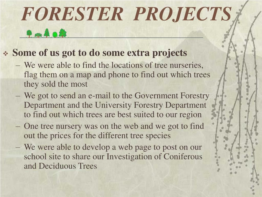 FORESTER  PROJECTS