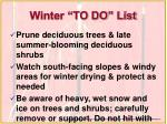 winter to do list
