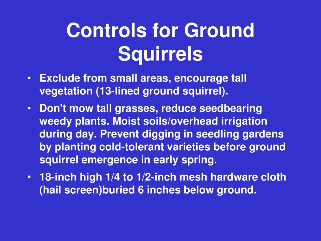 Controls for Ground Squirrels