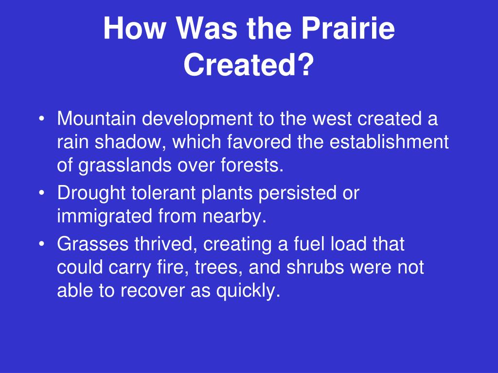 How Was the Prairie Created?