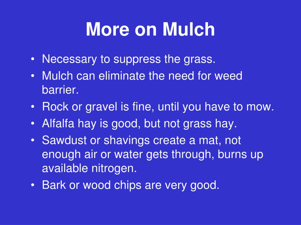More on Mulch