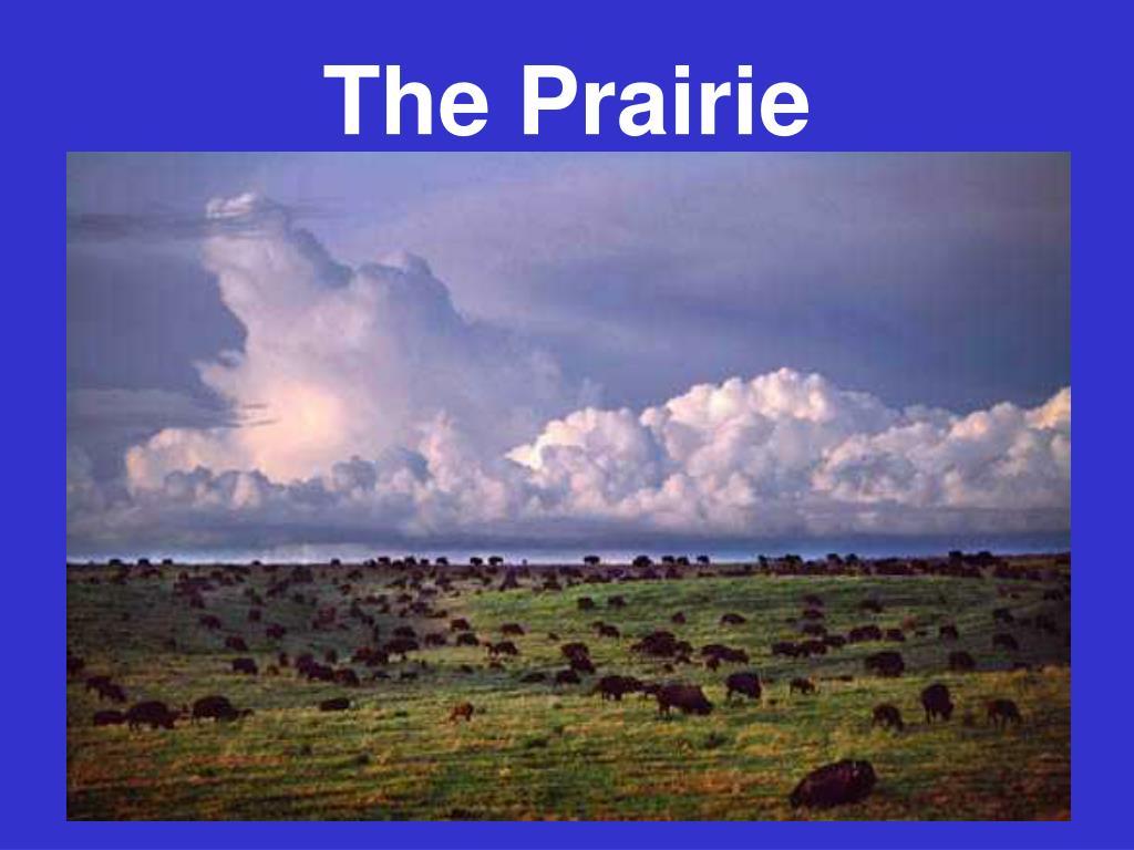 the prairie l.