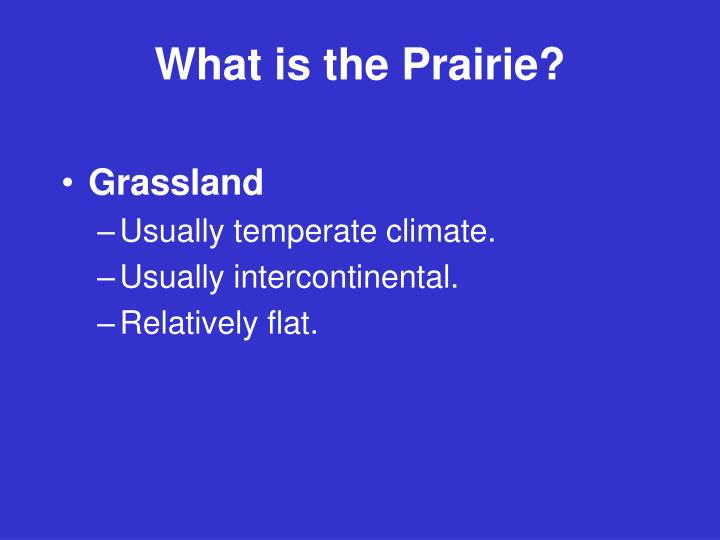 What is the prairie