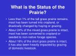 what is the status of the prairie