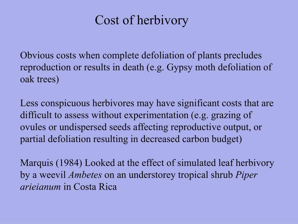 Cost of herbivory
