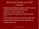 what else should your ecp include