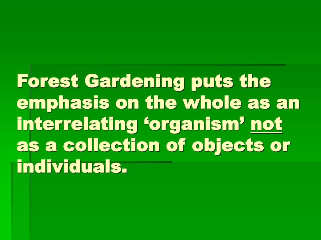 Forest Gardening puts the emphasis on the whole as an interrelating 'organism'