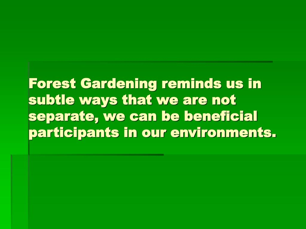 Forest Gardening reminds us in subtle ways that we are not separate, we can be beneficial participants in our environments.