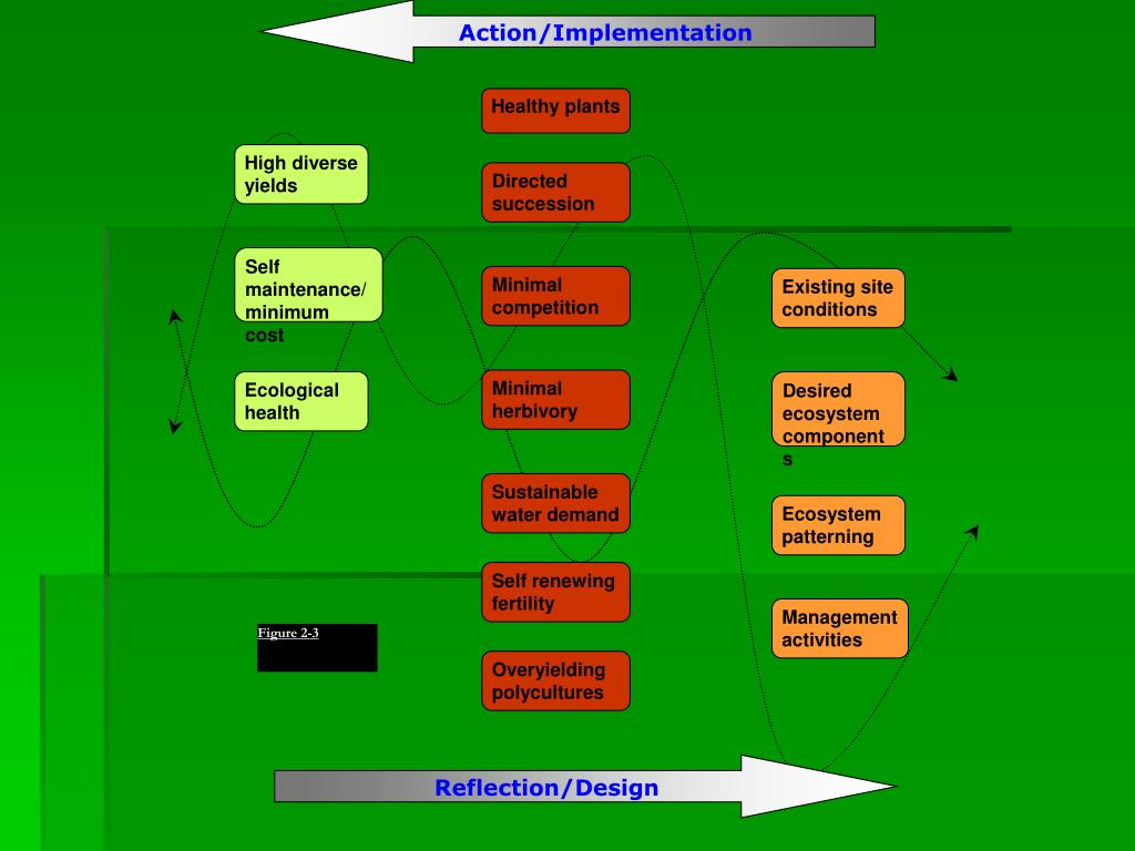 Action/Implementation