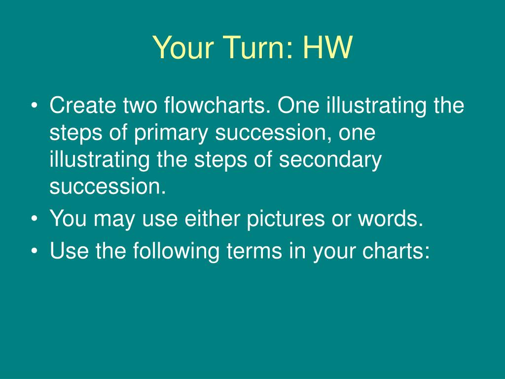 Your Turn: HW