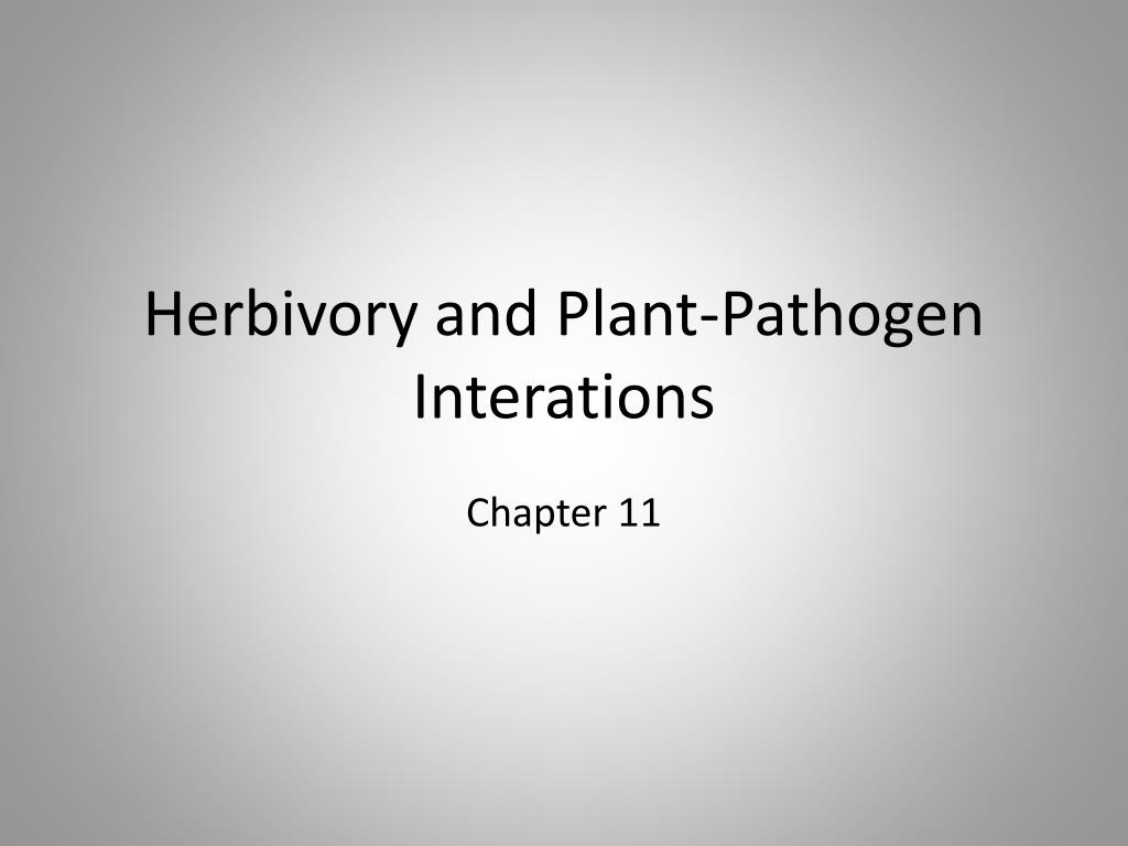 herbivory and plant pathogen interations l.