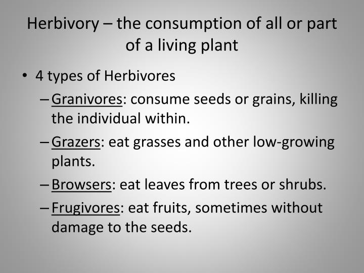 Herbivory the consumption of all or part of a living plant