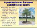 a peninsula can increase available soil space