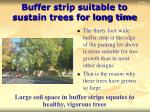 buffer strip suitable to sustain trees for long time