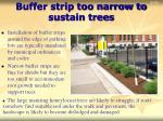 buffer strip too narrow to sustain trees