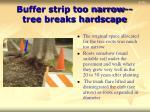 buffer strip too narrow tree breaks hardscape