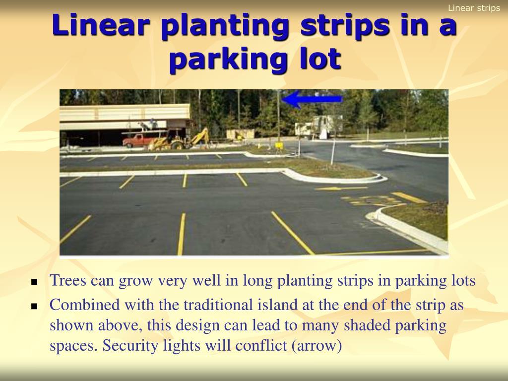 Linear strips