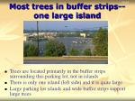most trees in buffer strips one large island