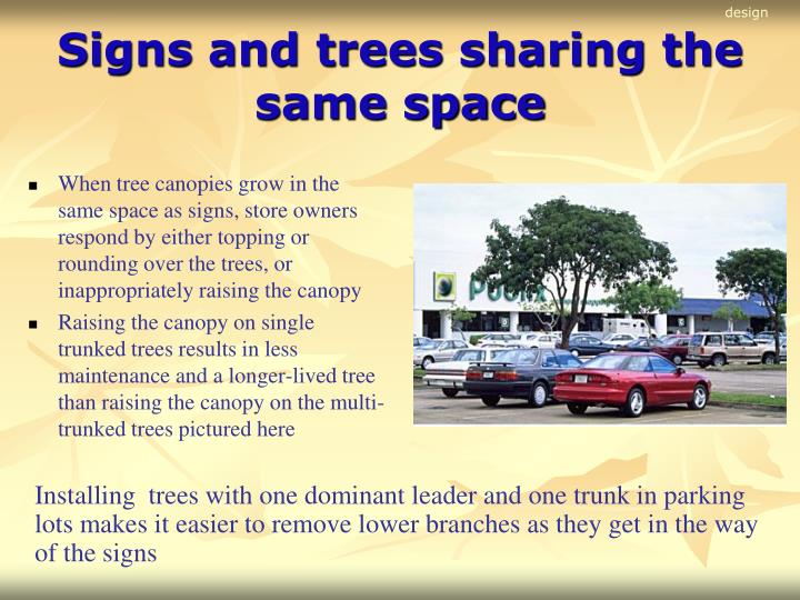 Signs and trees sharing the same space