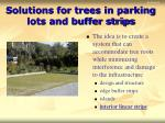 solutions for trees in parking lots and buffer strips32