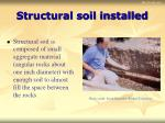 structural soil installed