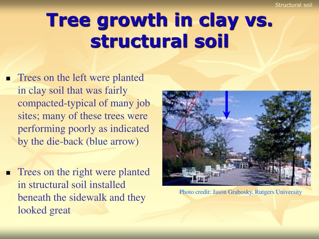 Structural soil