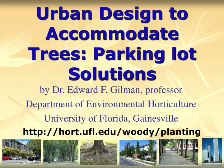 Urban design to accommodate trees parking lot solutions