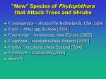 new species of phytophthora that attack trees and shrubs15