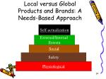 local versus global products and brands a needs based approach24