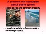 a common mis coneption about public goods
