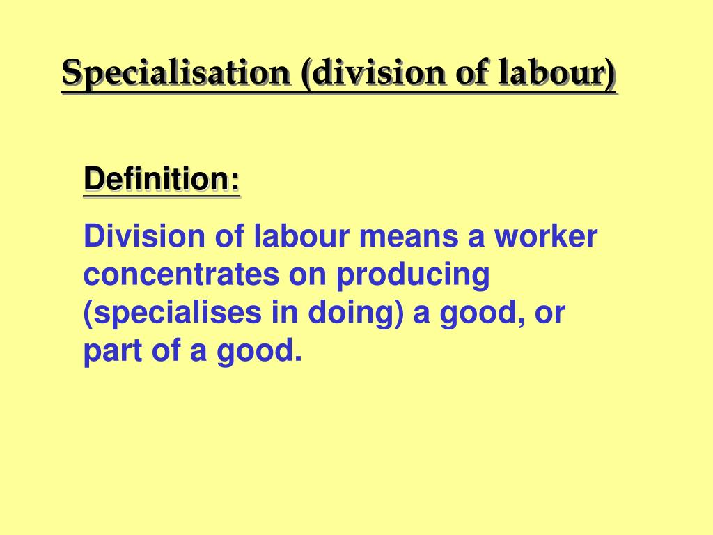 Specialisation (division of labour)