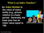 what is an index number