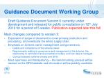 guidance document working group