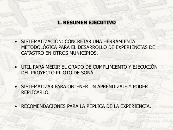 1 resumen ejecutivo