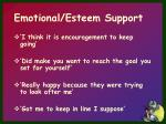 emotional esteem support