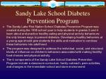sandy lake school diabetes prevention program