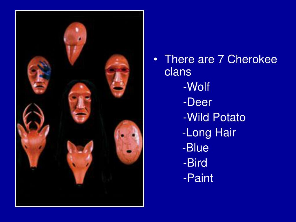 There are 7 Cherokee clans