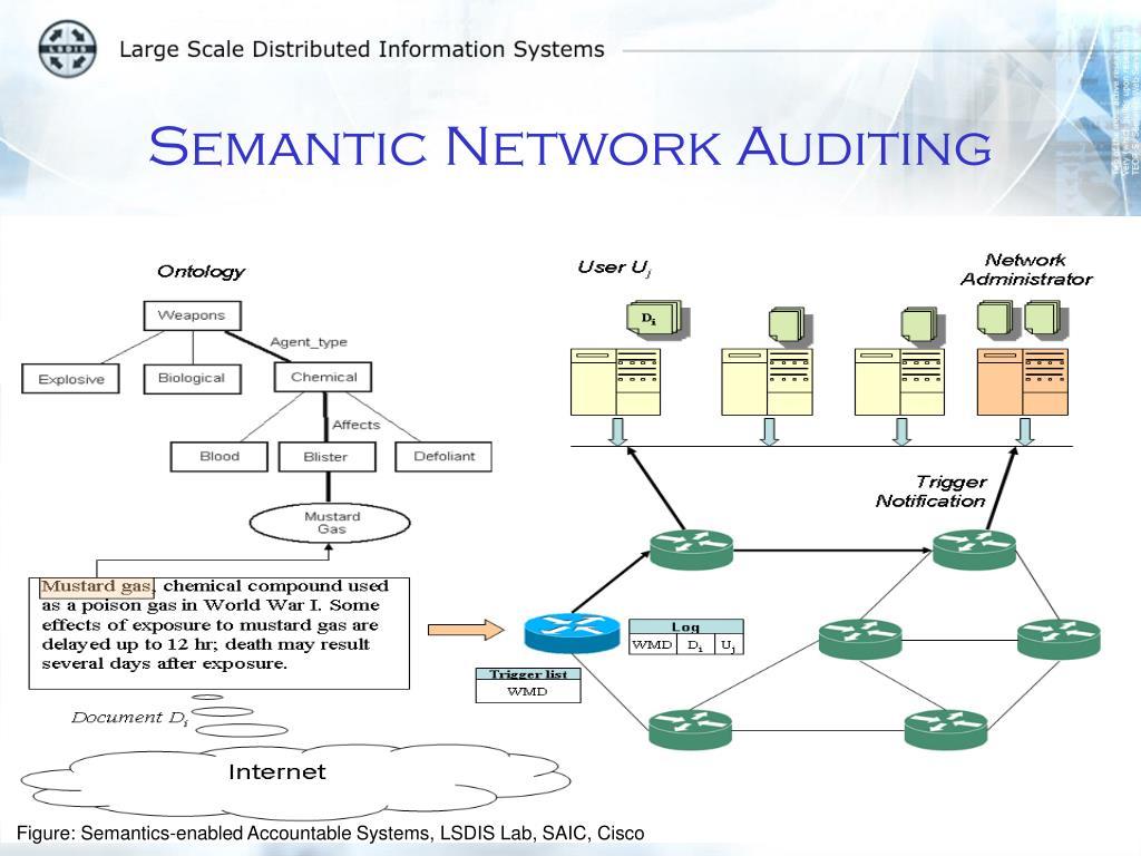 Semantic Network Auditing