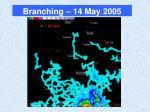 branching 14 may 2005