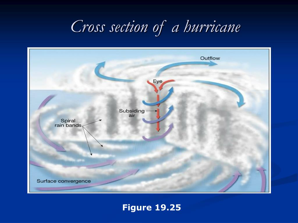 Cross section of a hurricane